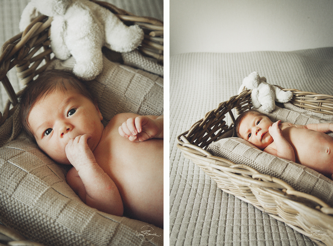 anna, franck, photography, baby, vauva, valokuvaus, barnfotografering, pargas, parainen, åbo, turku, natural, familjefotograf, stockholm